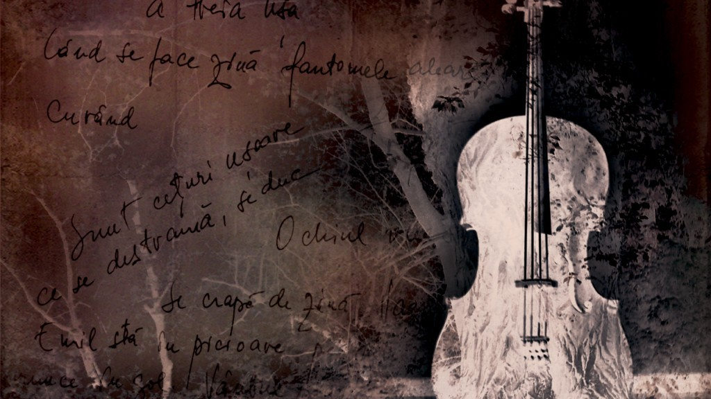 cello-2b-1024x768-1024x576.jpg